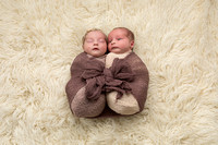 Newborn twins all wrapped up