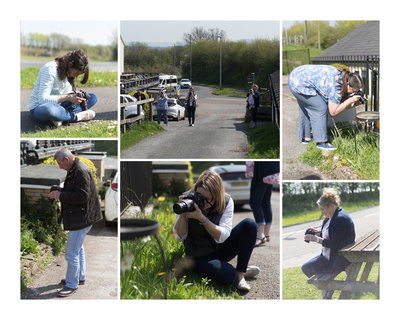 Beginners photography course somerset (yeovil)