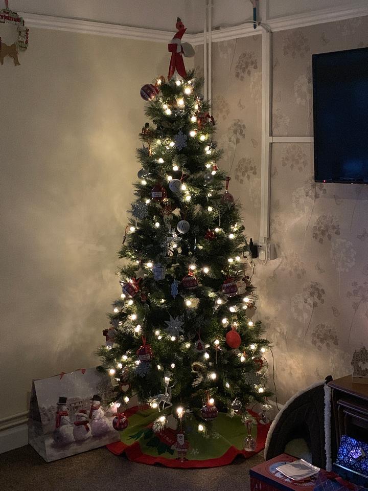 Christmas tree up