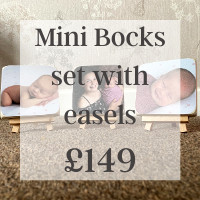 Mini Bocks set with easels £149