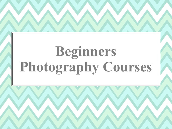 """beginners photography course somerset"""